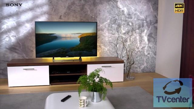 sony bravia kd 49xd8005 4k hdr telev zi triluminos. Black Bedroom Furniture Sets. Home Design Ideas